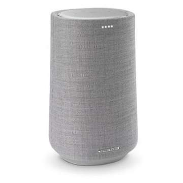 Harman Kardon Citation 100 Speaker Grijs